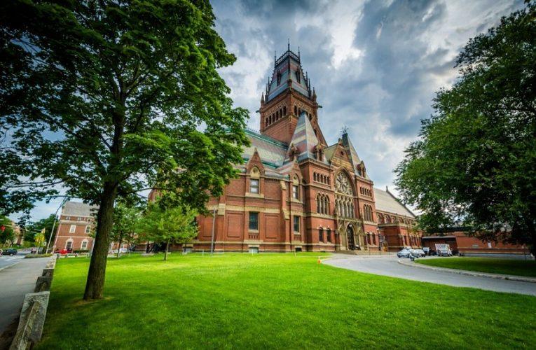 Mendapatkan Beasiswa Dari Universitas Harvard